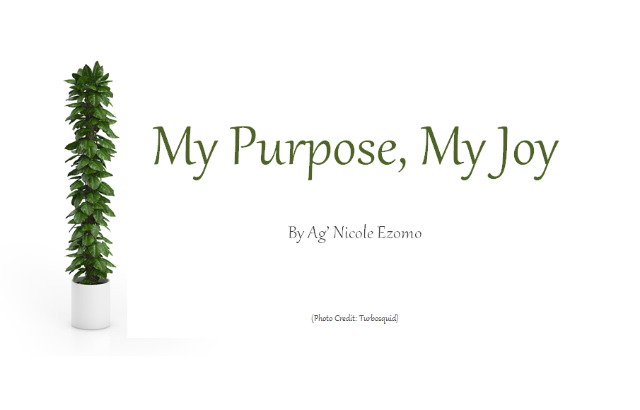 My Purpose, My Joy