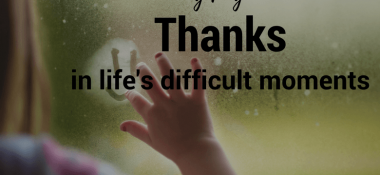 Searching for Thankfulness