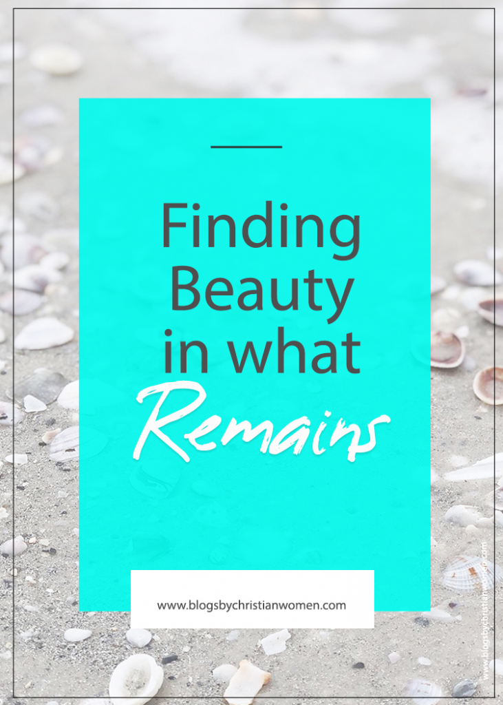 Finding Beauty in the Shell of What Remains