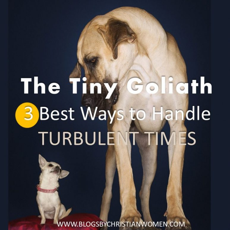 How to Handle Life's Tiny Goliath